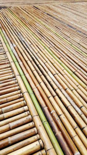擦了SK2的竹子